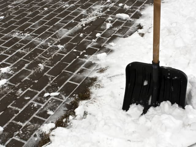 Garden Maintenance in Winter