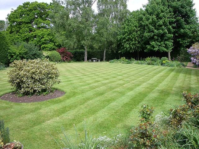 Turfing, Mowing and Lawn Treatments
